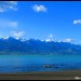 NZ gallery - Kaikoura, 29-30ott2014 (9)_wm